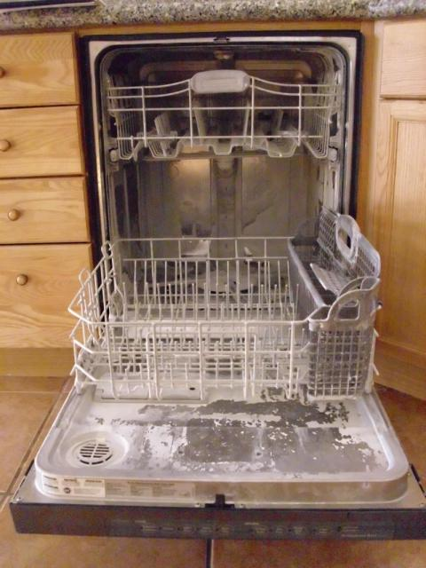 Working dishwasher problems